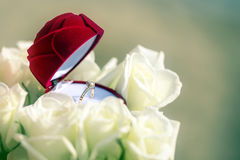 Concept of flower box with wedding ring inside among whites roses. Royalty Free Stock Photos