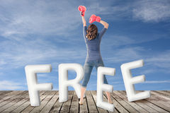 Concept of free Royalty Free Stock Images