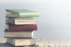 Concept of freedom with a group of books in the middle of nature royalty free stock photo