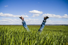 Concept of freedom and joy, man with jeans lying in wheat field Royalty Free Stock Photos