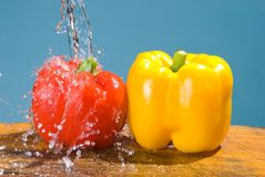 Concept of fresh vegetable, bell pepper Royalty Free Stock Images
