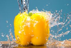 Concept of fresh yellow bell pepper vegetable Royalty Free Stock Photos