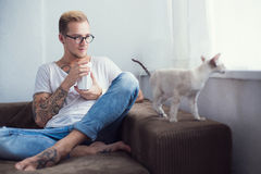 Concept : Friendship between Human and Pet. Oriental Shorthair. Animal. Cat Royalty Free Stock Images