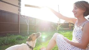Concept of friendship and pets. Happy young woman and dog having fun at grass stock video