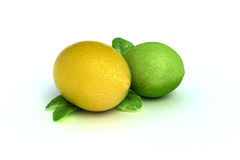 Concept fruit of a lemon and lime Royalty Free Stock Image