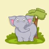 Concept of funny cute elephant. Stock Photos