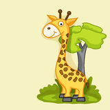 Concept of funny cute giraffe. Stock Image