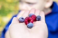 Concept gezond voedsel Verse bessen als symbool van geheel voedsel Royalty-vrije Stock Afbeeldingen