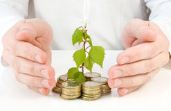Concept for good investment. And money making Stock Photos