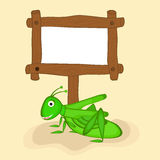 Concept of grasshopper with blank wooden board. Royalty Free Stock Images