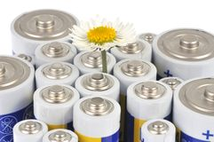 Daisy among electric batteries royalty free stock photo