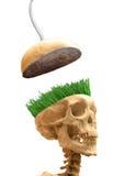 Concept groene meningen stock illustratie