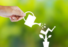 Concept of growing company with paper plant Royalty Free Stock Photo