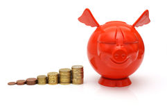Concept of growing savings with coins and piggy Royalty Free Stock Images