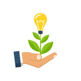 Concept growing vector. Concept growing idea. Man holding in palm hands of a growing sprout with a light bulb. Vector illustration flat design. Isolated on white Stock Images