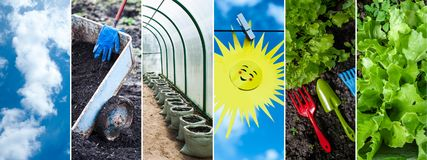 Concept of growing vegetables, greens , collage. Black land, pla. Nting, sprouts, blue sky and sun, tools for cultivating the earth Royalty Free Stock Photos