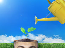 Concept of growth. Watering can waters a sprout in the cut of head against the background of the sky. Concept of development Royalty Free Stock Photos