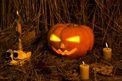 Concept Halloween. Stock Image