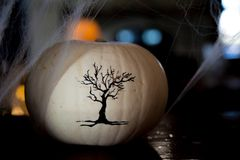 Tree draw white pumpking spider net background Stock Photography