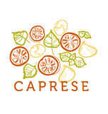 Concept hand drawn caprese elements Stock Image