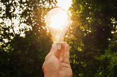 Concept  hand hold light bulb solar energy in nature Stock Photo