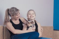 Concept of happy family: laughing mom and daughter playing with a Yorkshire terrier dog royalty free stock image