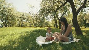 Happy young mother playing on blanket with her cute son under tree at park. Concept of happy family love. Happy young mother playing on blanket with her cute son stock video footage