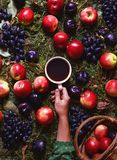 Concept harvest in September. Autumn composition with coffee, apples, plums, grapes. Cozy mood, comfort, fall weather Royalty Free Stock Photography