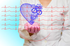Concept of health and medicine - female doctor holding a red heart with gears with ecg lines. Concept of health and medicine female doctor holding a red heart royalty free stock image