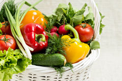 Concept of a healthy diet. The basket of vegetables. Selective focus Royalty Free Stock Images