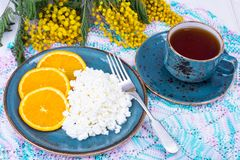 Concept of healthy dietary nutrition. Fresh raw cottage cheese with fruit, herbal tea. Studio Photo Stock Images