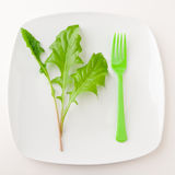 Concept of healthy eating or dieting. Plate with green salad leaves and fork on light background Stock Image