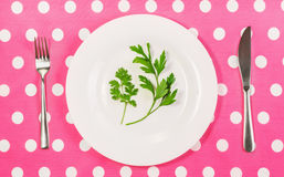 Concept of healthy eating. Lose weight, vegetarian, vegan, raw food, potherb in the diet, sprig of fresh parsley, cilantro on a plate, fork and knife on a Stock Image