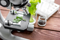 Concept healthy food inspection herbs in laboratory. Close up Stock Image