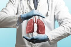 Concept of healthy lungs. Image of a doctor in a white coat and lungs above his hands. Concept of healthy lungs stock images