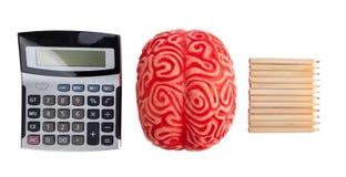 Concept hersenenhemisferen tussen logica en creativiteit Stock Foto's
