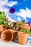 Concept het tuinieren, aardthema Stock Afbeeldingen
