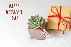 Concept heureux de jour du ` s de mère Boîte-cadeau et cactus vert, étiquette de papier avec le texte de MAMAN d'AMOUR Image libre de droits