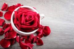 Concept heureux de jour du ` s de Valentine Images libres de droits