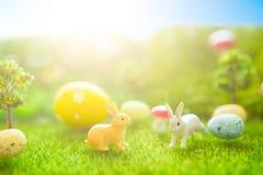 Concept heureux de Pâques Jouet de lapins de Pâques sur l'herbe verte de ressort Coucher du soleil de conte de fées sur le champ  Photos libres de droits
