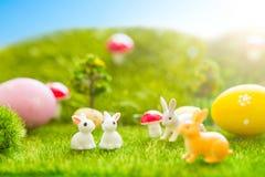 Concept heureux de Pâques Les lapins de Pâques joue avec des oeufs de pâques sur l'herbe verte Coucher du soleil de conte de fées Photographie stock libre de droits