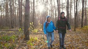 Concept of hiking and nature travel. Young couple of hikers in forest on autumn stock video