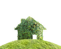 Concept by house on nature Stock Image