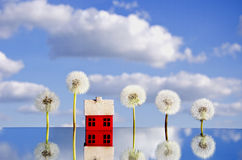 Concept with house symbol on mirror and dandelion Royalty Free Stock Photos