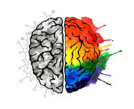 Concept of the human brain. Creative concept of the human brain. Right and left side royalty free illustration