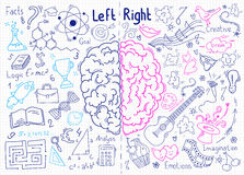 Concept of the human brain. Left and right hemisphere of brain. Concept of brain functions. Hand-drawn pen sketch royalty free illustration
