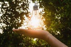 Concept idea  hand hold light bulb solar Royalty Free Stock Photos