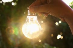 Concept idea hand holding light bulb in nature with sunshine for. Save power energy Royalty Free Stock Photo