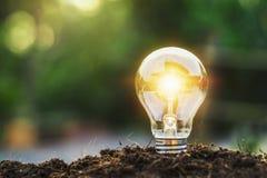 Concept idea saving energy light bulb. And sunlight stock photo
