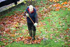 An concept Image of a old man doing gardening, work Royalty Free Stock Photography